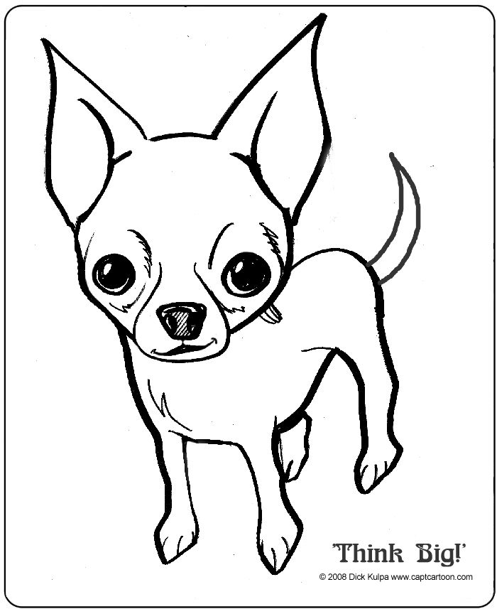 how to draw a pitbull face angry pitbull drawing at getdrawings free download draw a pitbull face how to