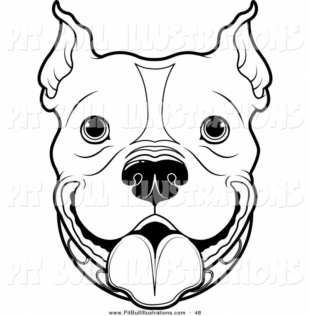 how to draw a pitbull face pit bull portrait stock vector illustration of funny to pitbull face draw a how