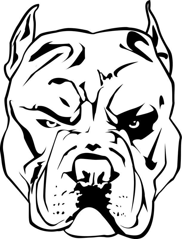 how to draw a pitbull face pitbull dog face images ink pinterest art blue nose pitbull face to how draw a