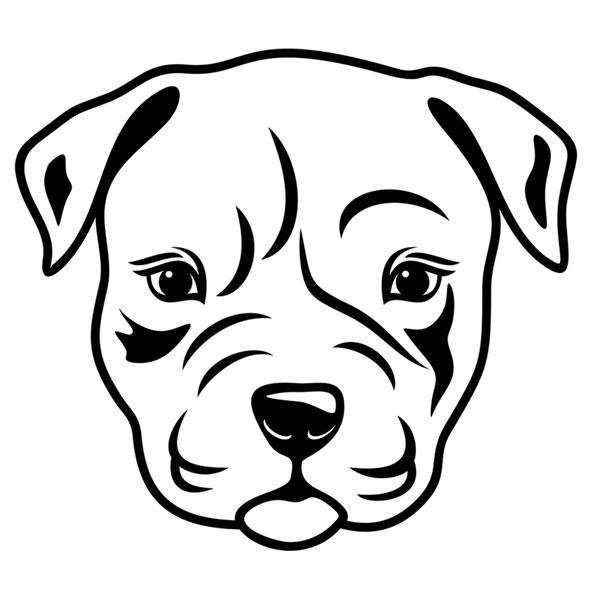 how to draw a pitbull face pitbull face drawing 1b5bxa clipart kid draw face pitbull a to how