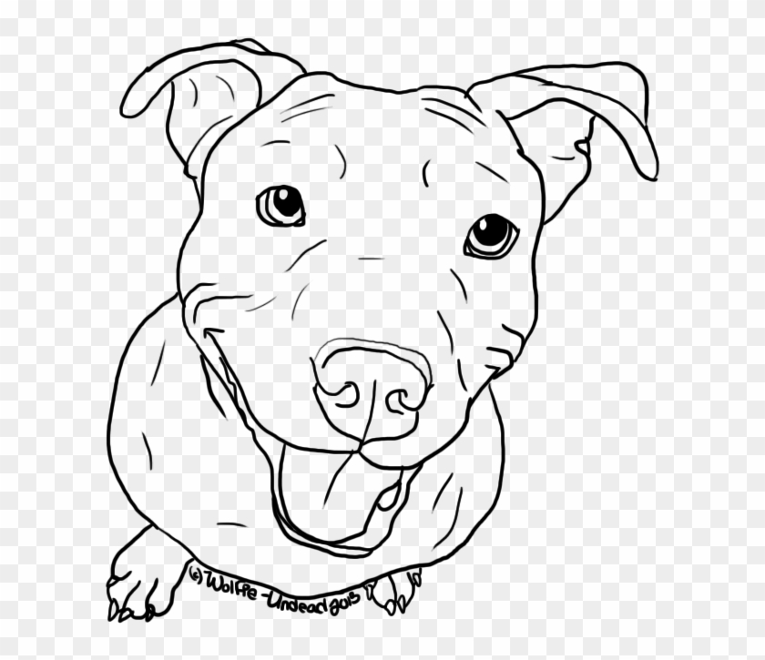 how to draw a pitbull face pitbull illustrations royalty free vector graphics clip pitbull face draw how a to