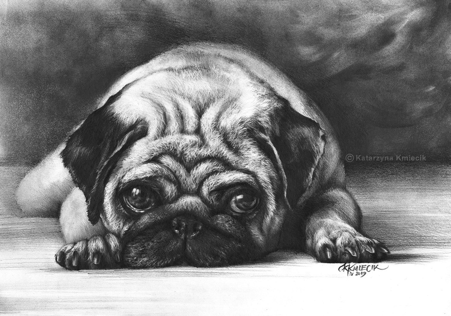 how to draw a realistic pug how to draw a realistic pug step by step pets animals a draw realistic pug to how