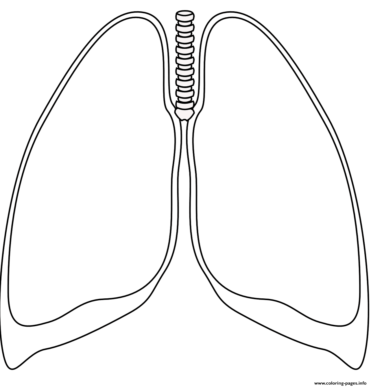 human lungs coloring pages lungs coloring page free printable coloring pages coloring lungs pages human
