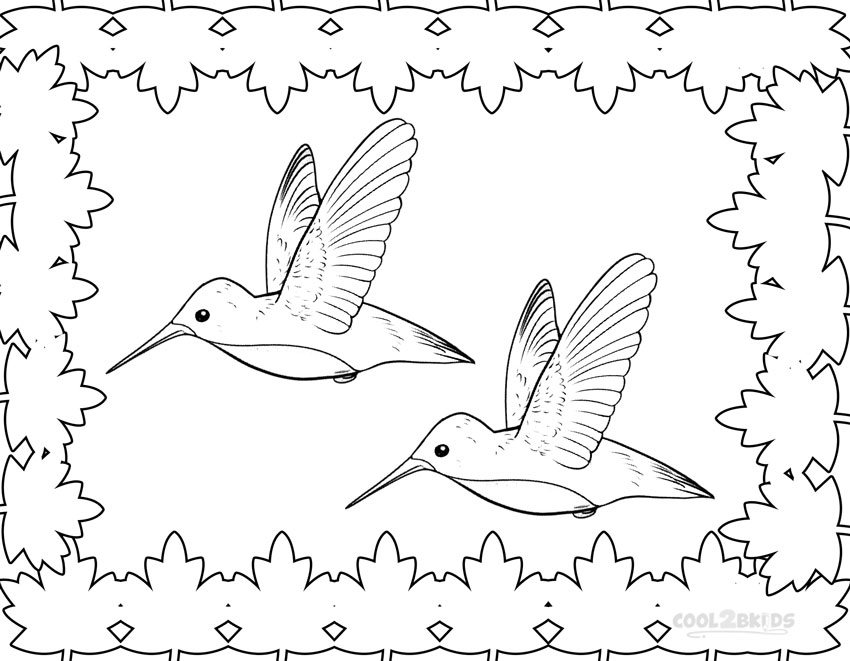 hummingbirds coloring pages printable hummingbird coloring pages for kids cool2bkids coloring pages hummingbirds 1 1