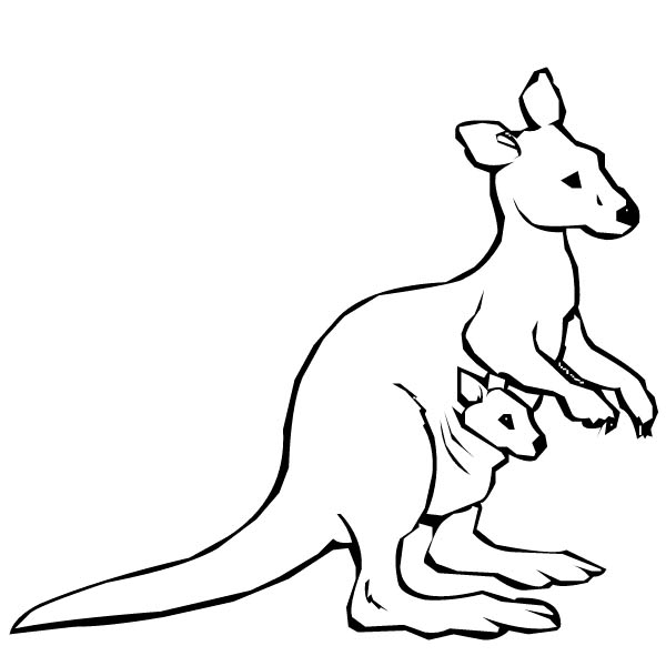 kangaroo colour in zoo kangaroo and baby coloring page wecoloringpagecom colour in kangaroo
