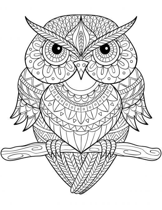 owl mandala coloring pages 818 best coloring owls images on pinterest coloring mandala coloring owl pages