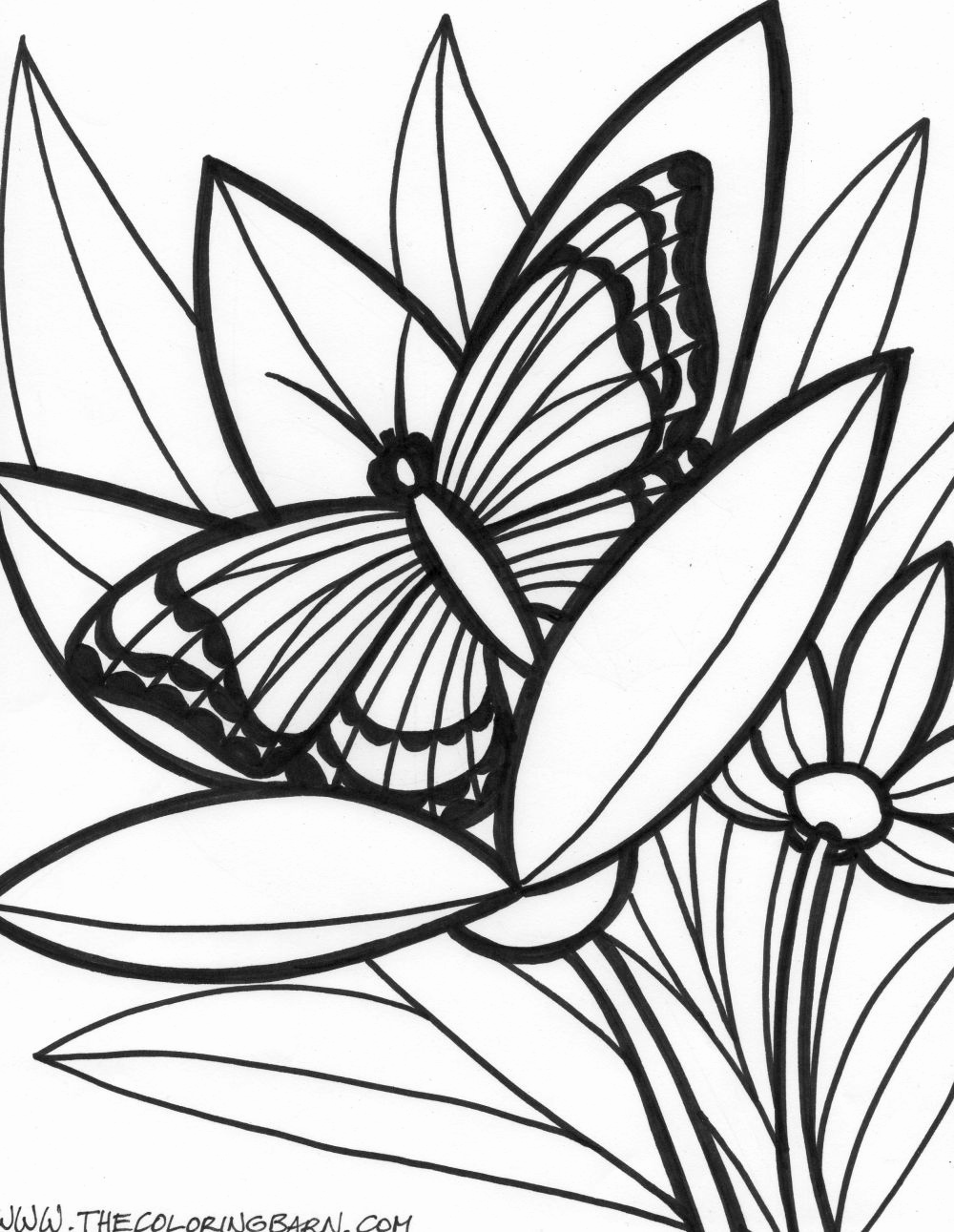 rainforest animal coloring pages free printable rainforest coloring pages coloring home rainforest coloring animal pages