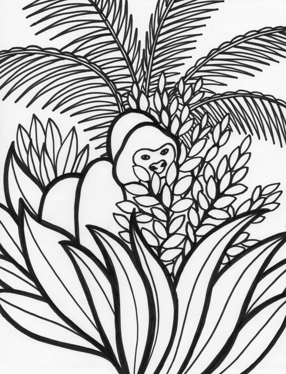 rainforest animal coloring pages monkey hanging on snake rainforest coloring page rainforest pages animal coloring