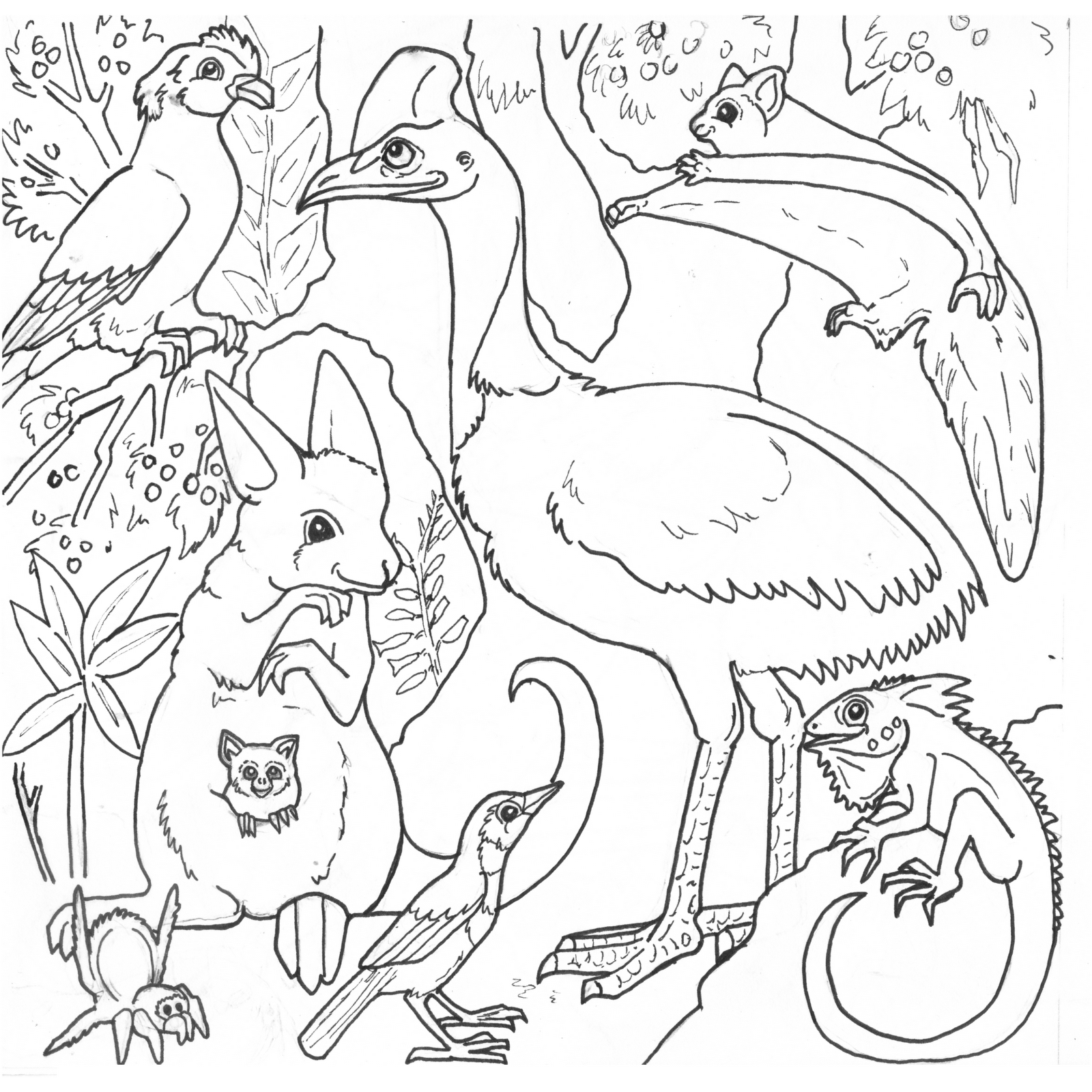 rainforest animal coloring pages savanna animals coloring pages at getdrawings free download animal rainforest pages coloring