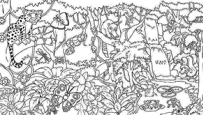 rainforest animal coloring pages the daily art of lemurkat october 2012 pages coloring rainforest animal