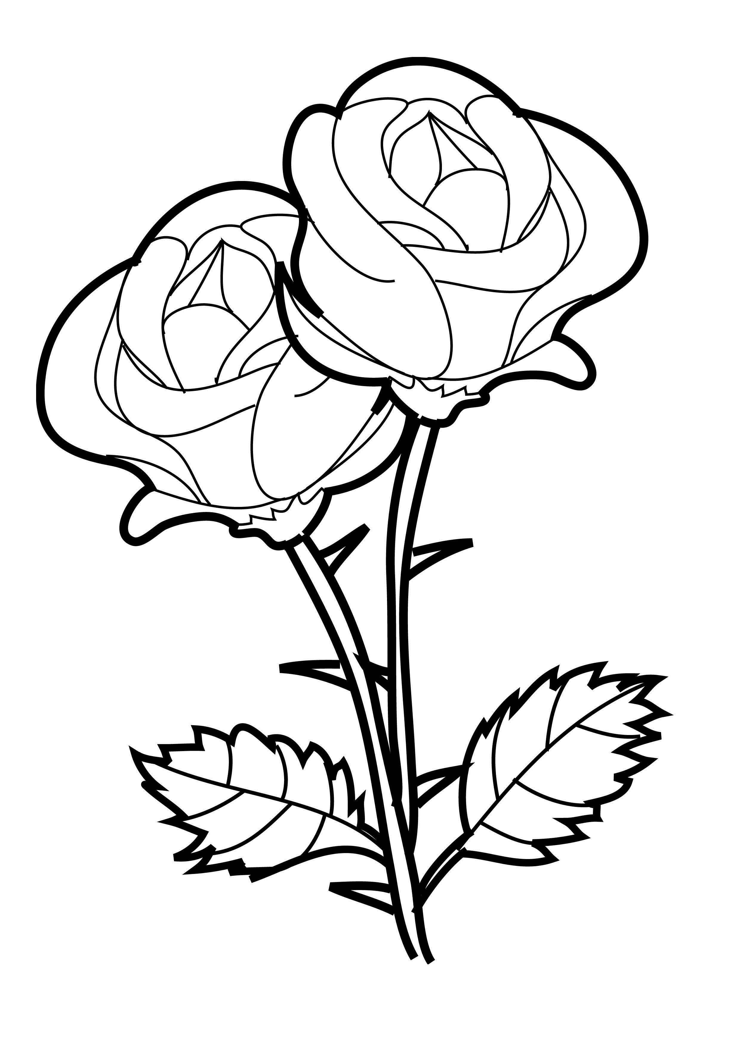 rose coloring page free printable roses coloring pages for kids coloring rose page