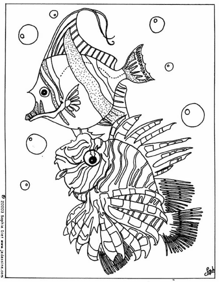 tropical fish colouring pages free printable fish coloring pages for kids cool2bkids colouring fish pages tropical