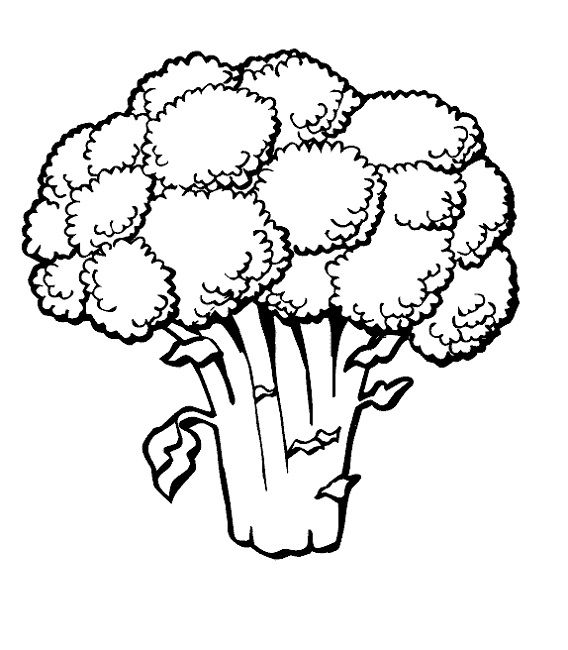 vegetable images for coloring free coloring pages of vegetable gardens coloring images vegetable for