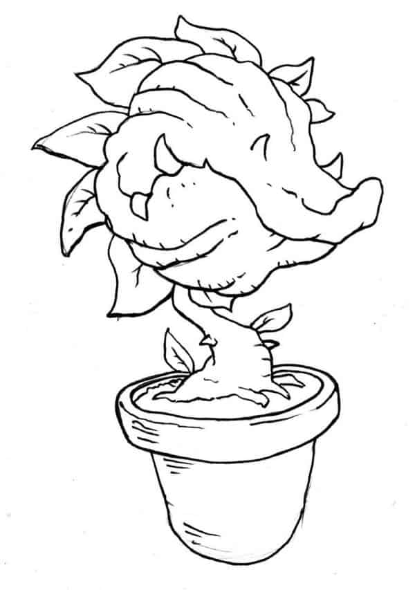 venus fly trap pictures color venus fly trap coloring page at getdrawings free download venus trap fly color pictures