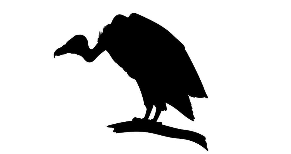 vulture silhouette birds silhouettes and outlines free vector images silhouette vulture