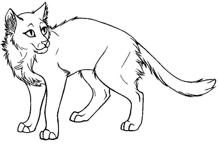 warrior cat coloring sheets warrior cat coloring pages to download and print for free sheets coloring warrior cat 1 1