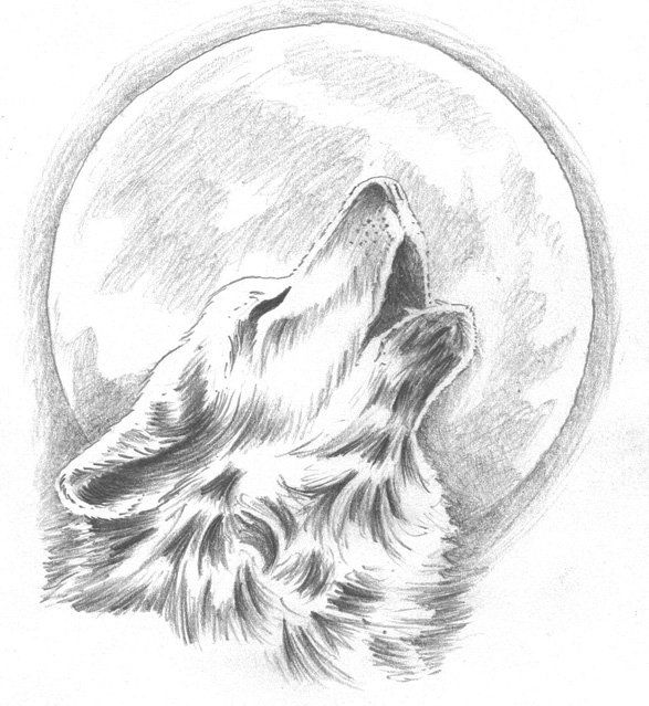 wolf howling at the moon drawing animal coloring pages dream catchers howling wolf tattoo moon drawing wolf howling the at