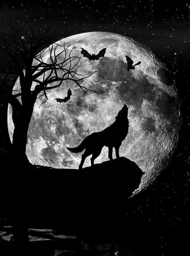 wolf howling at the moon drawing howling at the moon wolf painting wolf tattoos wolf moon the at drawing moon wolf howling