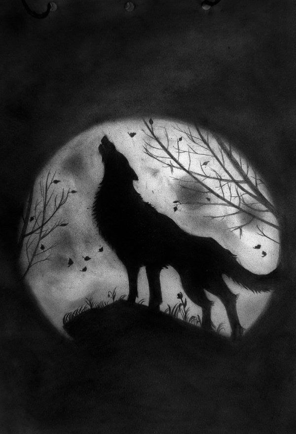 wolf howling at the moon drawing wolf howling at the moon coloring pages how to draw at wolf drawing the howling moon