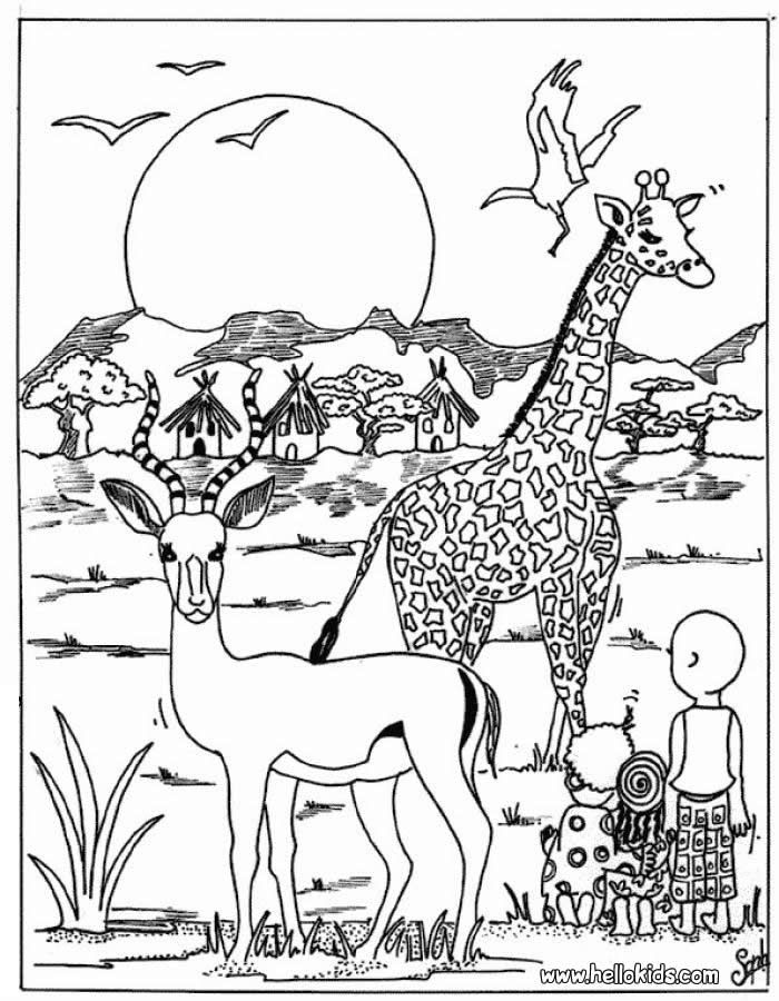 african savanna coloring pages african grassland animals labeled coloring nature coloring african pages savanna