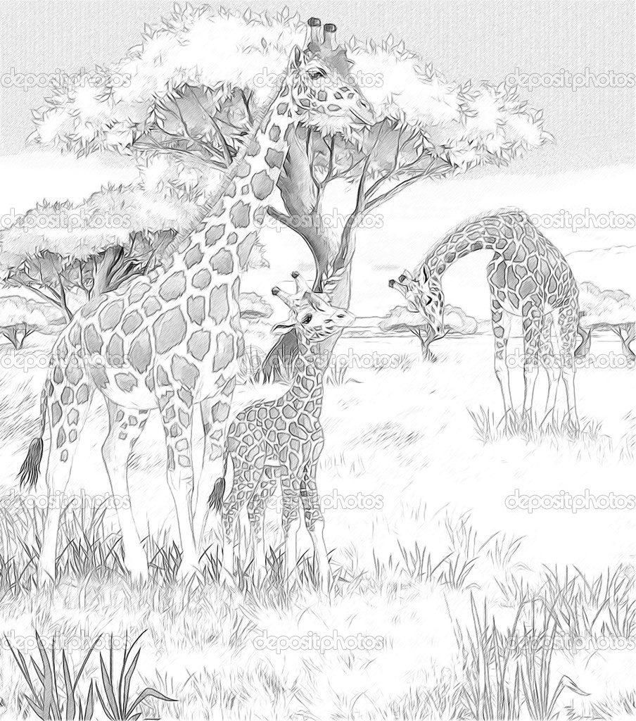 african savanna coloring pages african savanna landscape coloring pages coloring pages coloring african savanna pages