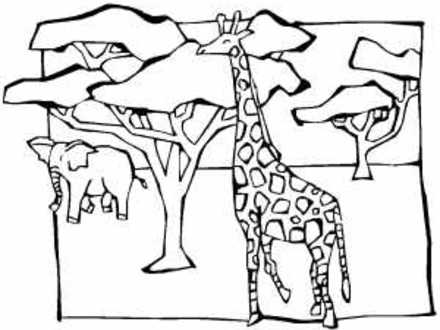 african savanna coloring pages birds of the african savanna coloring page african savanna pages coloring