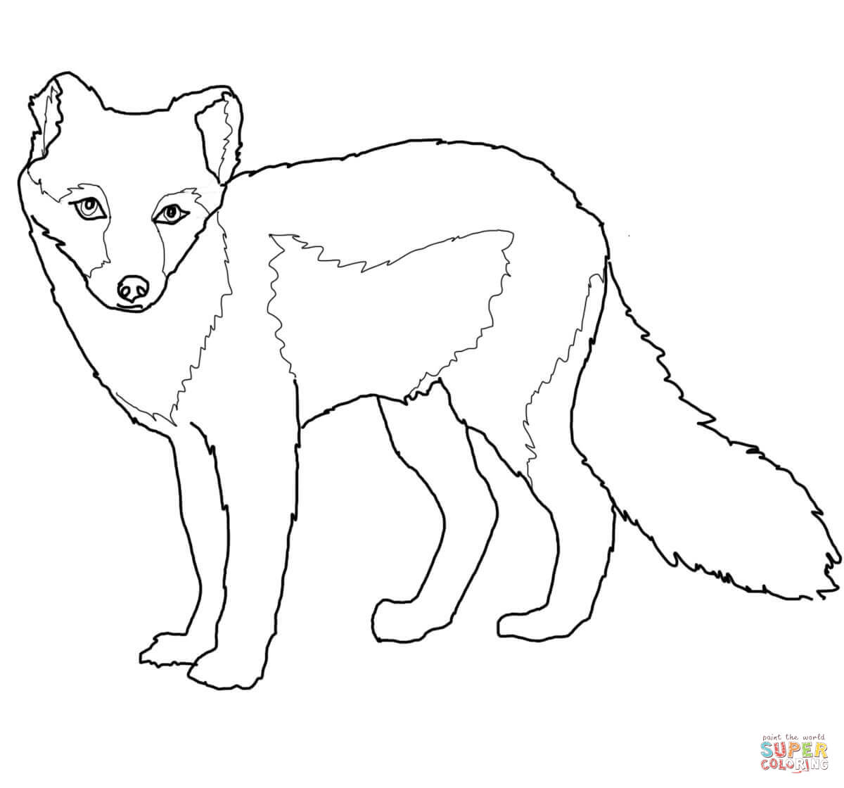 arctic fox coloring pages arctic fox coloring pages coloring pages to download and arctic coloring pages fox