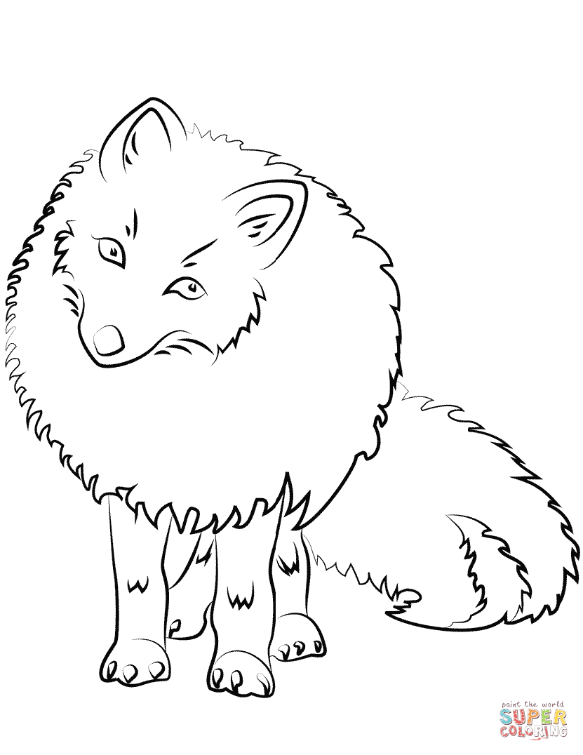 arctic fox coloring pages baby artic fox coloring pages best place to color coloring arctic fox pages