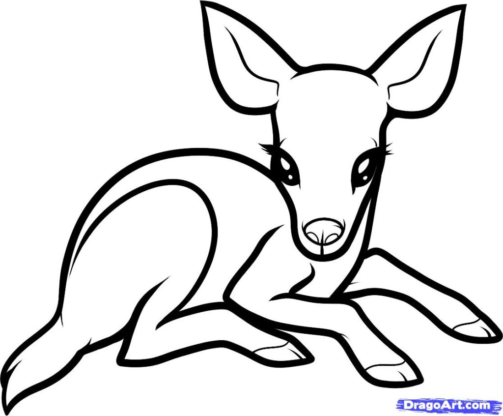 baby zoo animal coloring pages free printable zoo coloring pages for kids coloring zoo baby pages animal