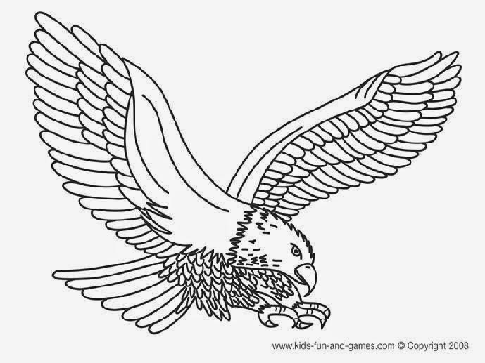 bald eagle coloring free angry bird coloring pages coloringsnet eagle coloring bald