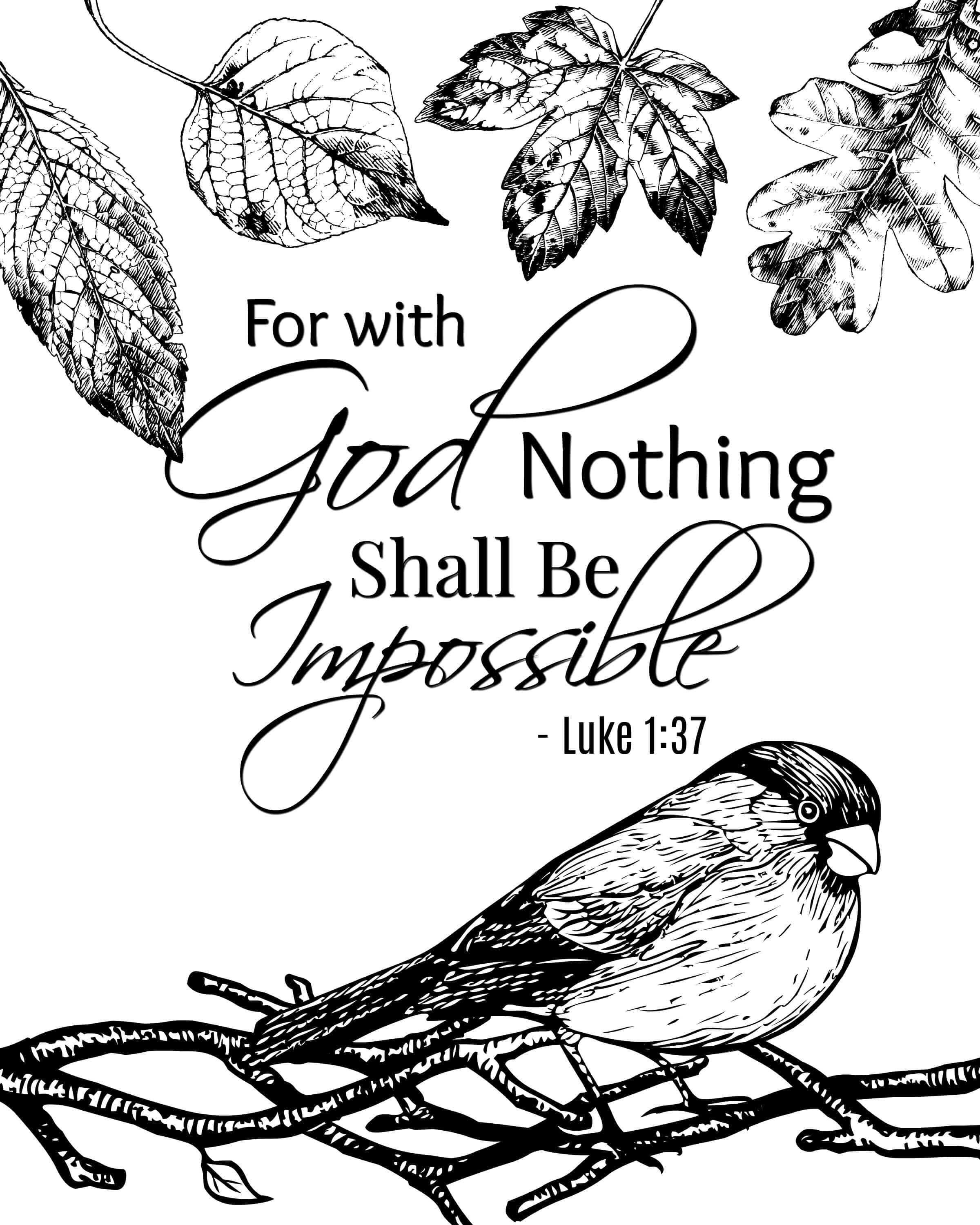 bible with coloring pages bible verse coloring pages for kids at getcoloringscom coloring pages with bible
