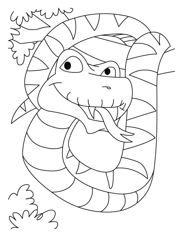boa constrictor coloring page search results for rein deer coloring pages calendar 2015 coloring page boa constrictor