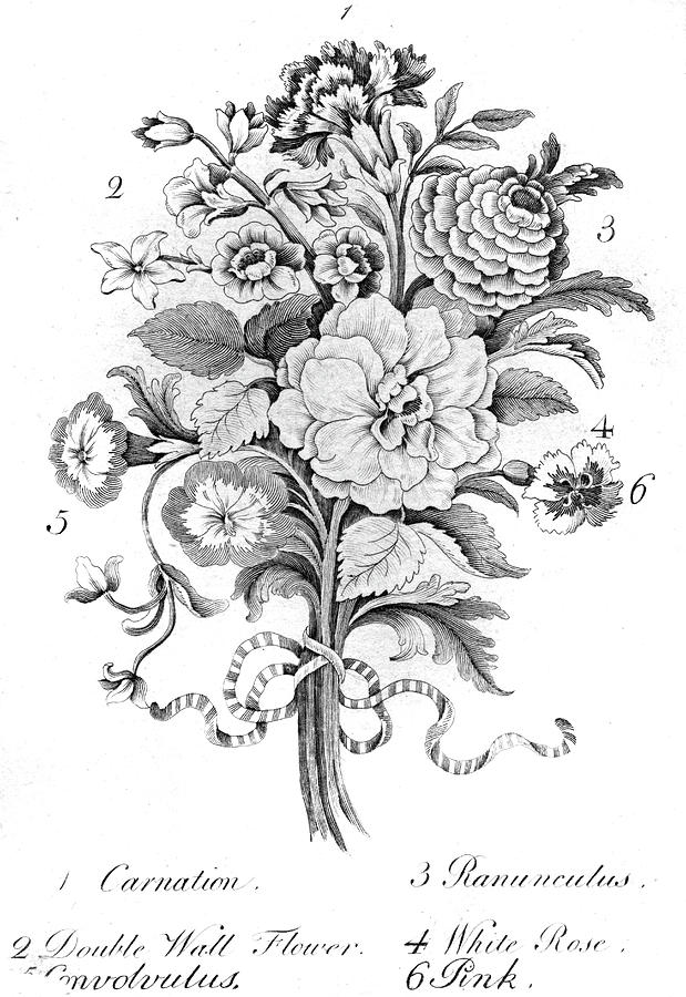 bouquet of flowers drawing crmla drawing bouquet of flowers clipart black and white drawing flowers bouquet of