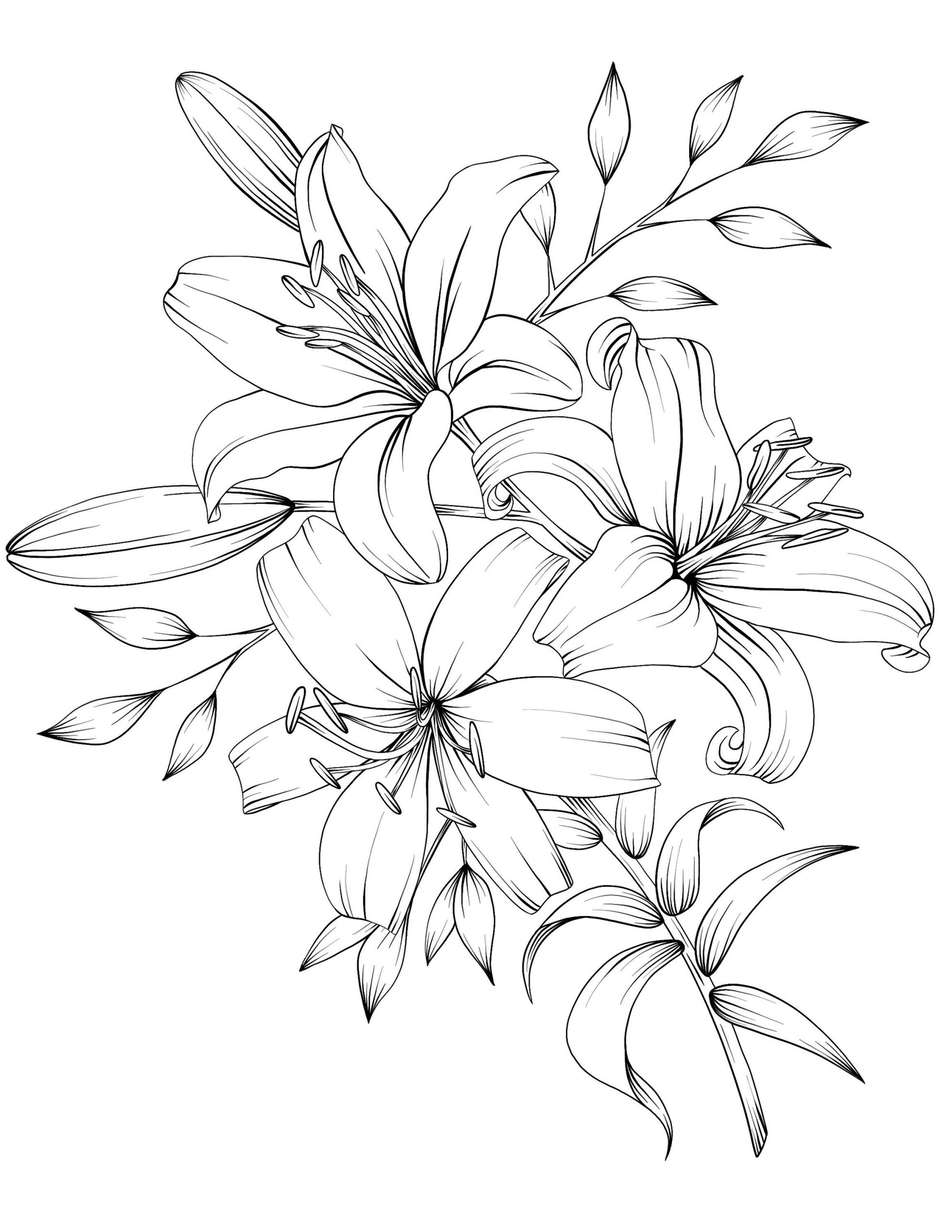 bouquet of flowers drawing vintage garden drawing spring bouquet stock photo bouquet drawing flowers of
