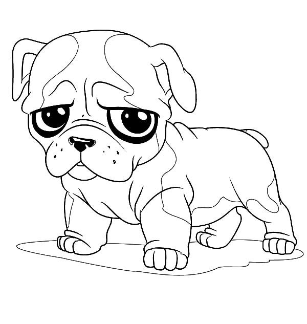 bulldogs coloring pages cute little bulldog coloring pages best place to color coloring bulldogs pages