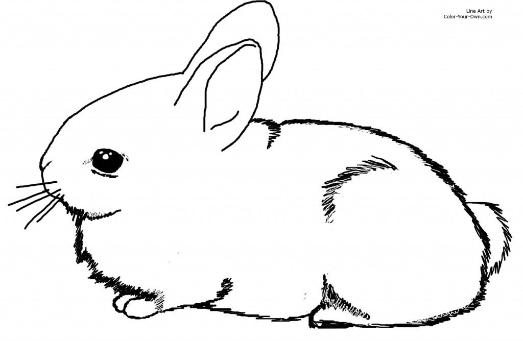 bunny printable bunny coloring pages best coloring pages for kids bunny printable 1 1