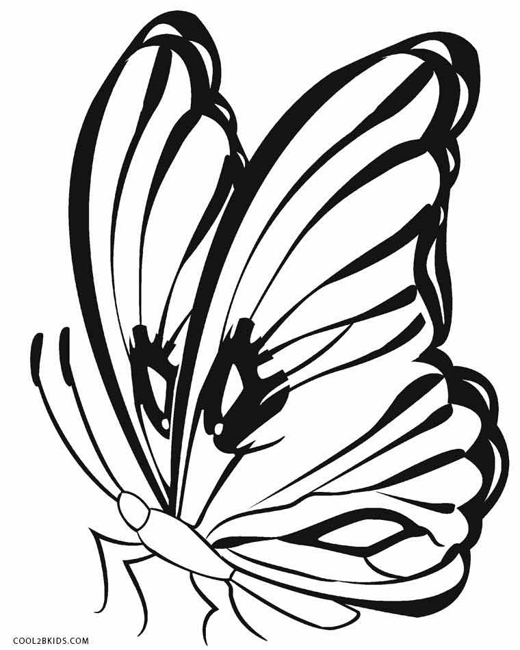 butterfly coloring book page butterfly coloring pages for kids butterfly page coloring book