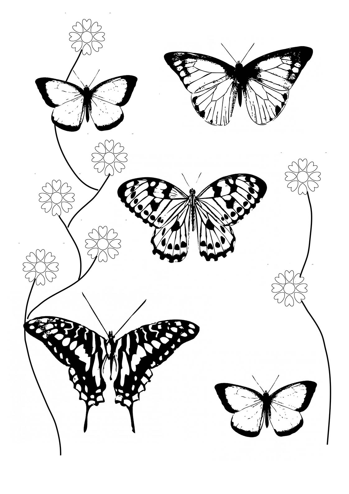 butterfly coloring book page butterfly coloring pages team colors page book coloring butterfly