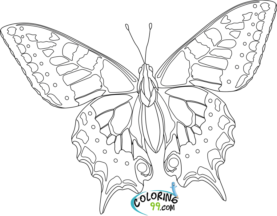 butterfly coloring book page butterfly my coloring land butterfly book coloring page