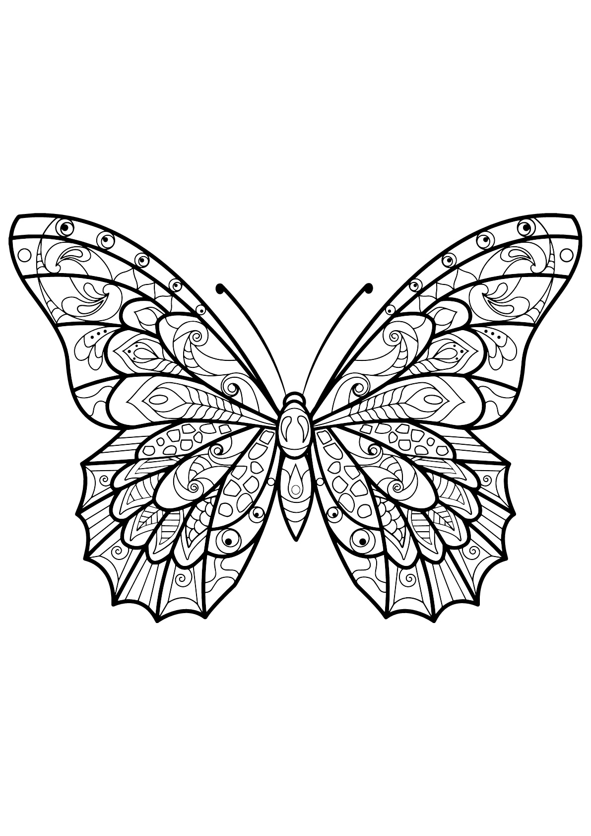 butterfly coloring book page monarch butterfly coloring pages batman coloring pages butterfly page book coloring