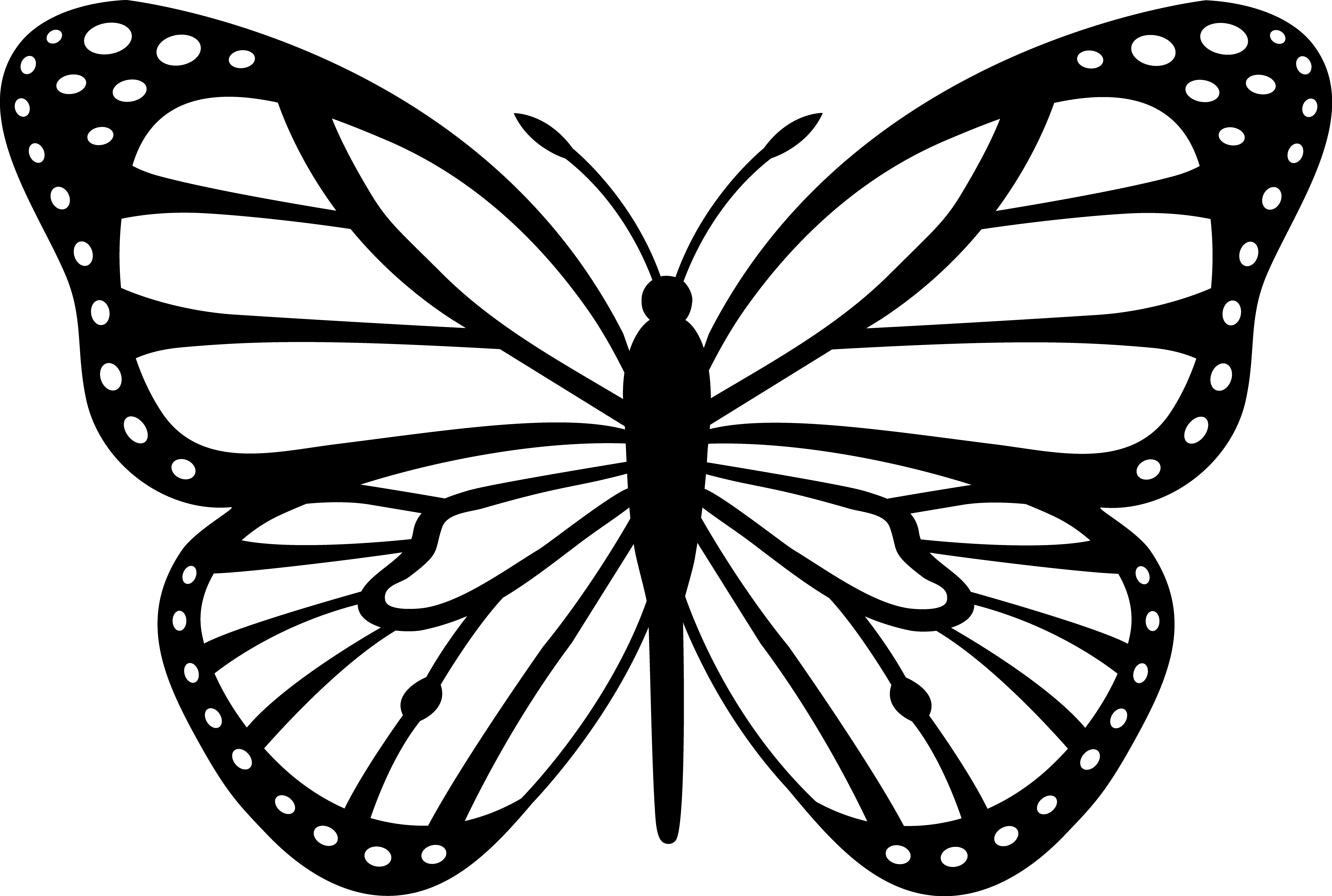 butterfly printable 10 butterfly coloring pages free premium templates printable butterfly