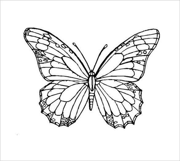 butterfly printable butterflies to color for kids butterflies kids coloring printable butterfly