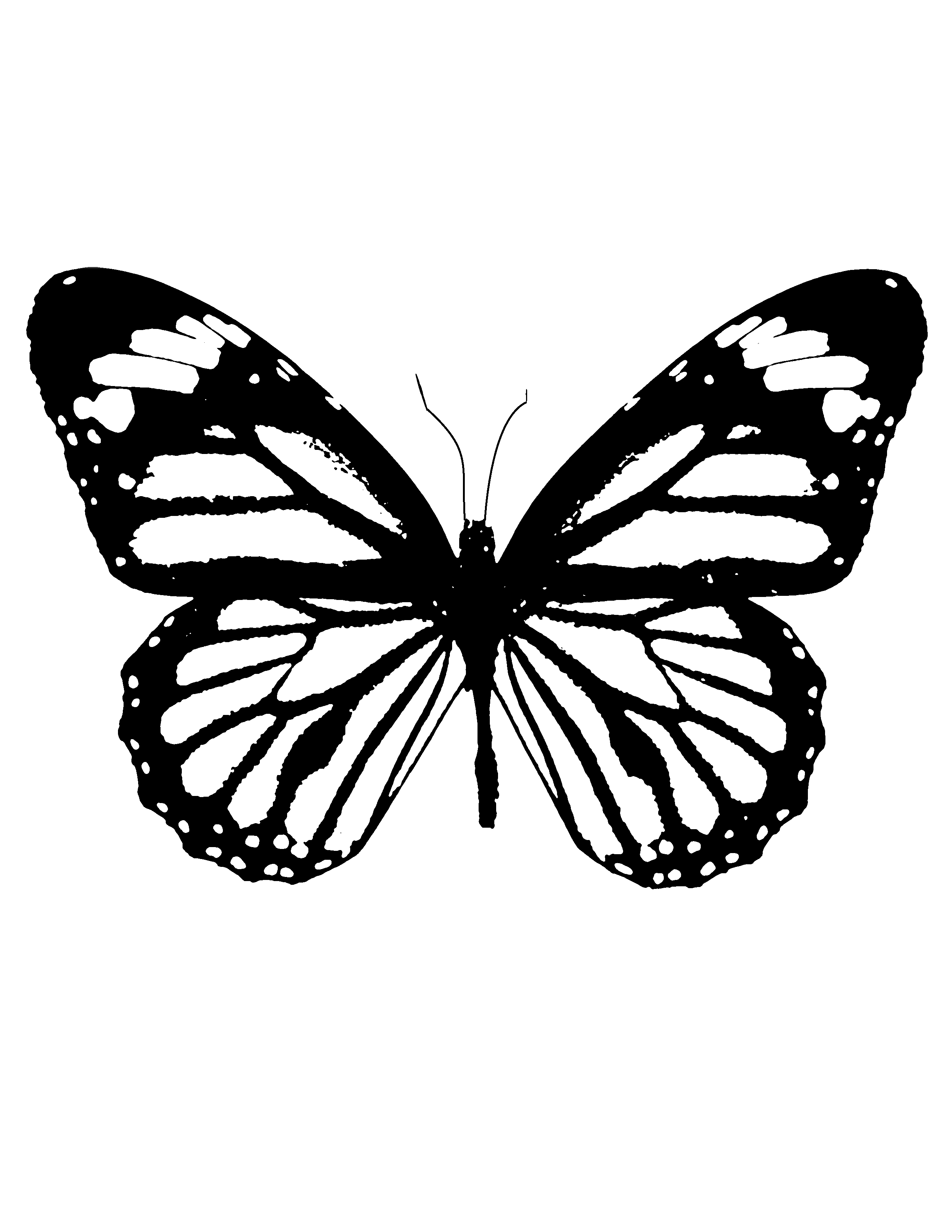 butterfly printable free butterfly stencil monarch butterfly outline and printable butterfly