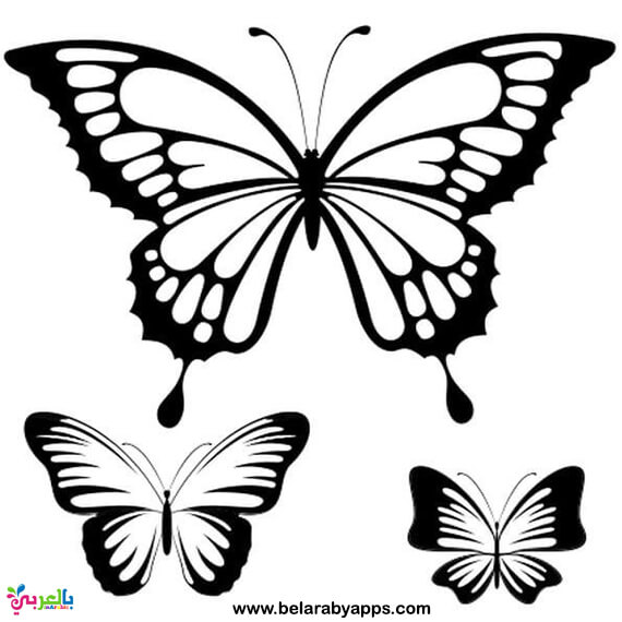 butterfly printable free digital butterfly png39s border digi stamps and diy butterfly printable