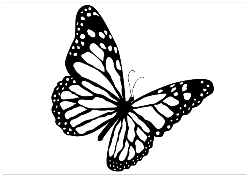butterfly printable printable butterfly coloring pages for kids cool2bkids butterfly printable