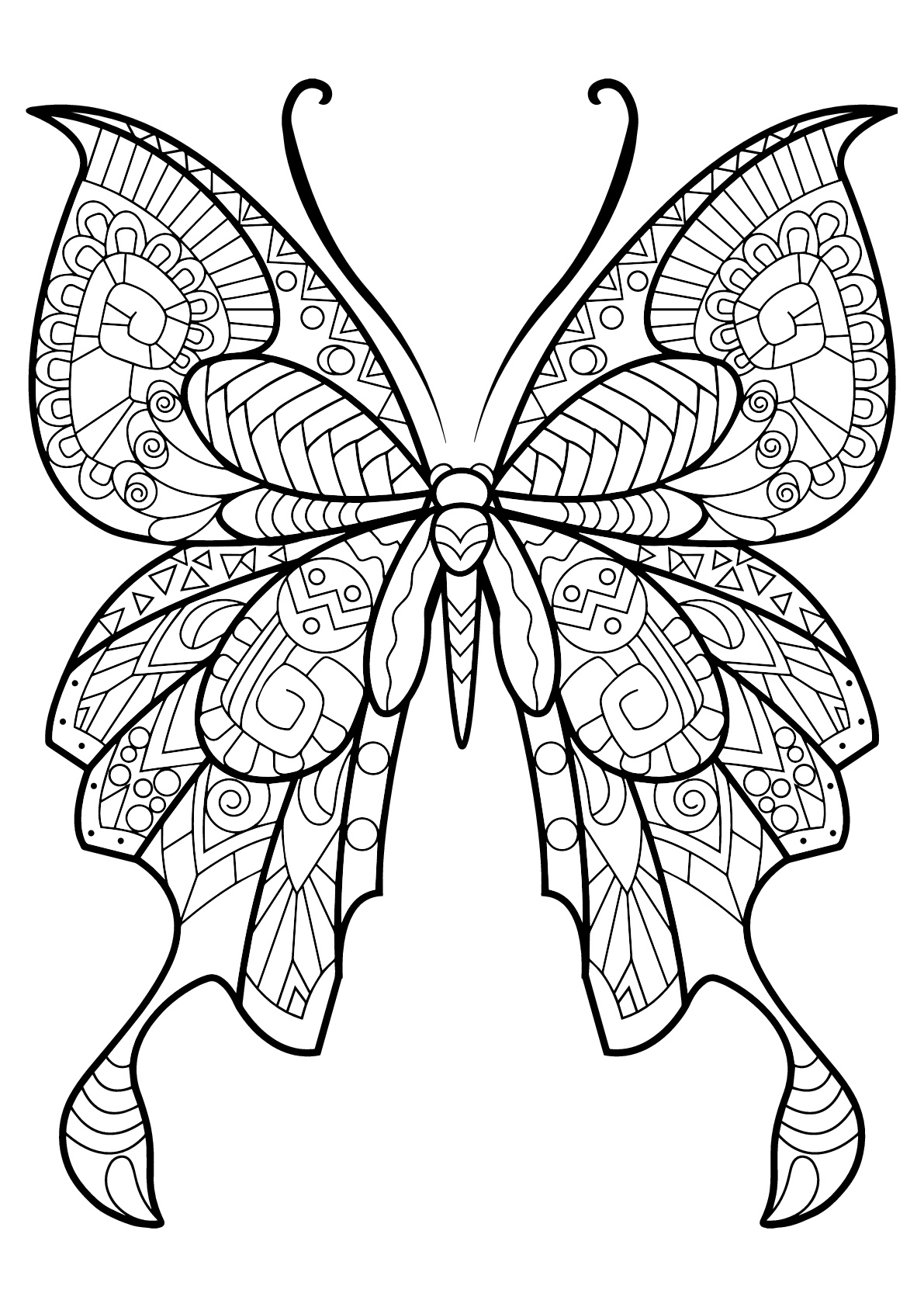 butterfly printable printable fun butterfly coloring pages for kids art hearty butterfly printable 1 1