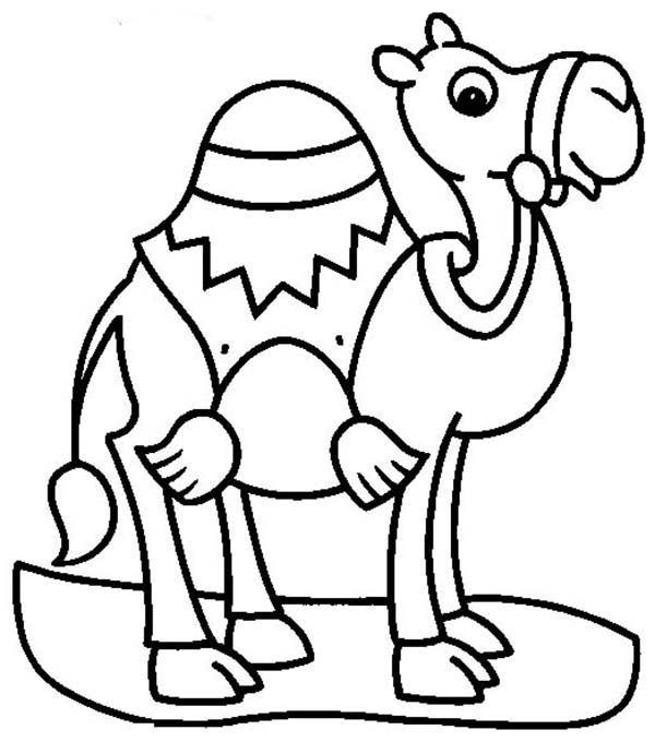 camels coloring pages camel line drawing at getdrawings free download pages coloring camels