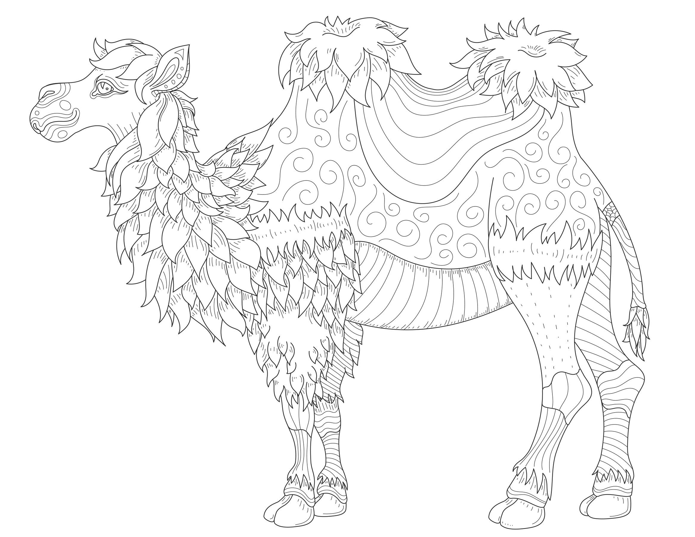 camels coloring pages camel printable bible coloring pages kids bible maps coloring pages camels