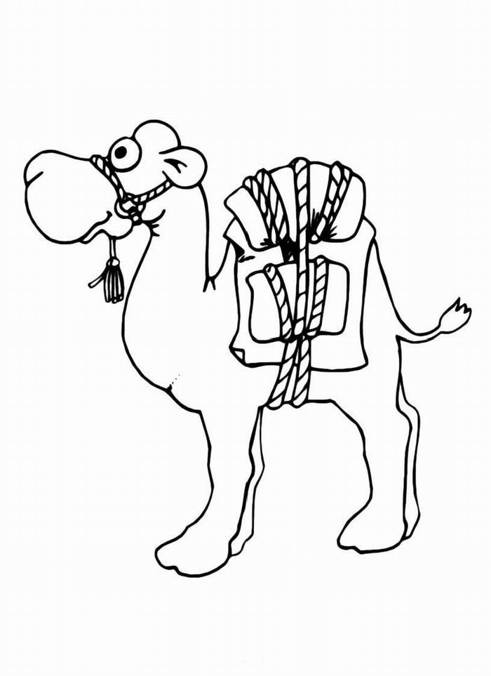 camels coloring pages free printable camel coloring pages for kids coloring pages camels 1 1