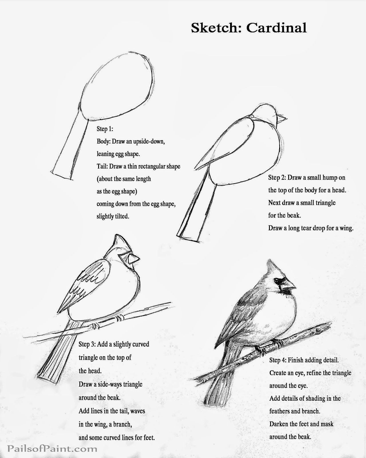 cardinal bird template image result for drawn cardinal bird drawings easy template bird cardinal